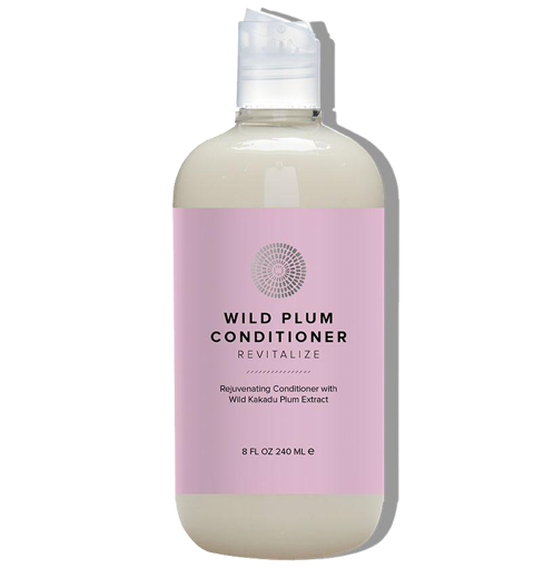 Hairprint Wild Plum Conditioner